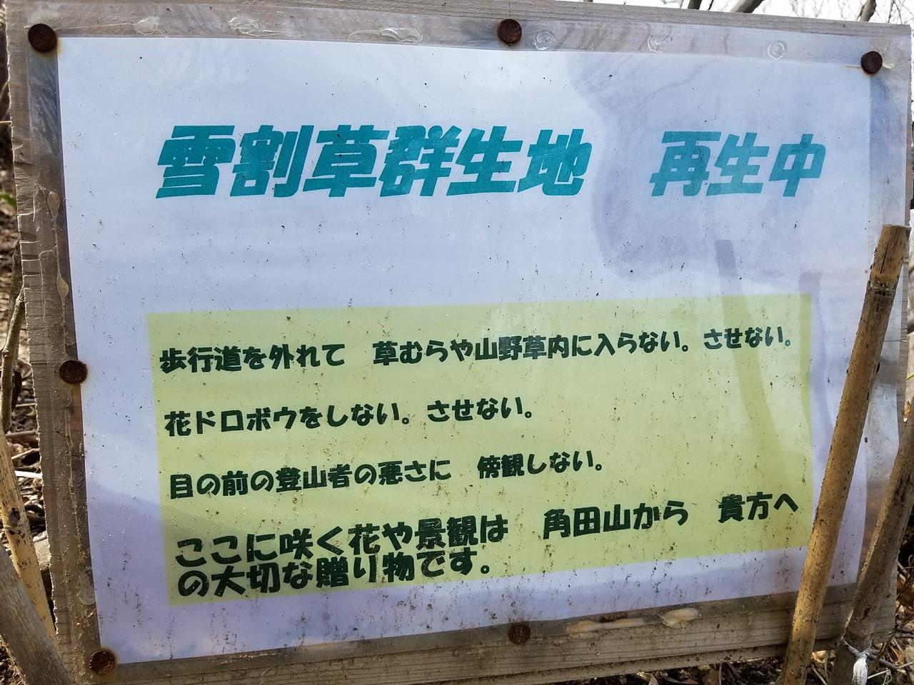 桜尾根コース